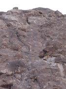 Rock Climbing Photo: Wall of Charlotte's Web