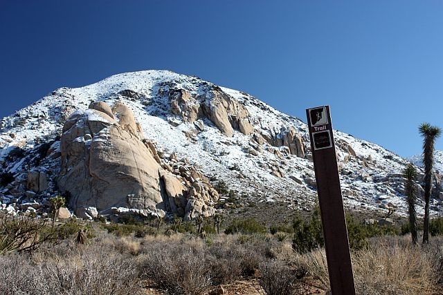 Rock Climbing Photo: Saddle Rocks Area after a snowstorm, Joshua Tree N...