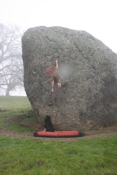 Rock Climbing Photo: My dog spotting me.