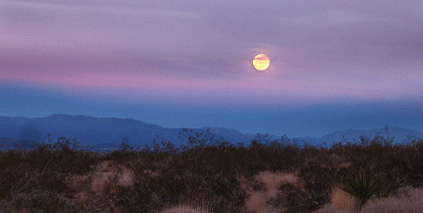 Rock Climbing Photo: Moonrise 1-29-10.  Photo by Blitzo.