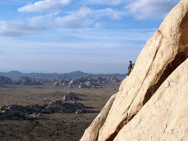 High above it all on Never Shake a Baby (5.9+), Joshua Tree NP