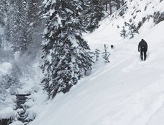 Rock Climbing Photo: Snowshoeing on Dead Ox Trail in the Black Hills
