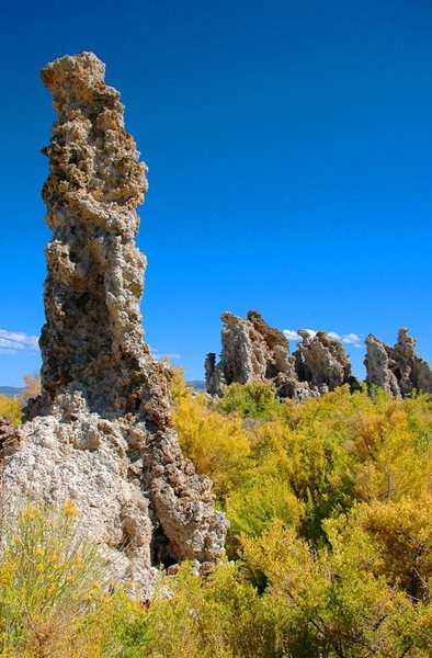 Rock Climbing Photo: Mono Lake tufas