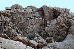 Rock Climbing Photo: Somewhere n00b. Photo by Blitzo.