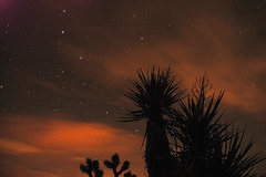 Rock Climbing Photo: Joshua Tree nighttime. Photo by Blitzo.