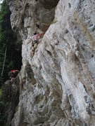 Rock Climbing Photo: The climber on the left is on Wacky Weed 5.10b/c. ...