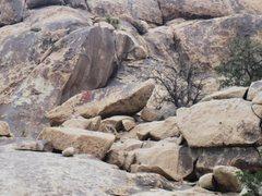 Rock Climbing Photo: Get Shorty