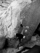 Rock Climbing Photo: Penguins in Bondage (V4), Joshua Tree NP