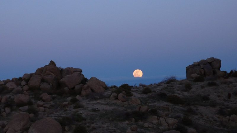Rock Climbing Photo: Full moon rise from the new trail to Tom's Thumb a...