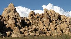 Rock Climbing Photo: Margaritaville. Photo by Blitzo.