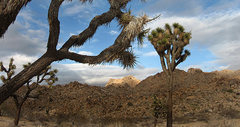 Rock Climbing Photo: Lizard's Landing from the parking area. Photo by B...