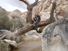 Rock Climbing Photo: A nice photo opportunity while looking for a route...