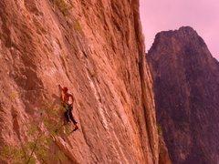 Rock Climbing Photo: potrero