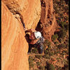 Tricia pulls the lip of the overhanging crack on the second pitch of The Fisher King in Sedona, AZ.