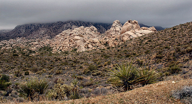 Granite Mountains.<br> Photo by Blitzo.