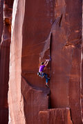 Rock Climbing Photo: Burl Dog (5.12+)