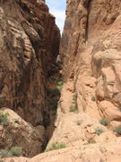 Rock Climbing Photo: Looking back down the rubble-filled gully.  The sh...