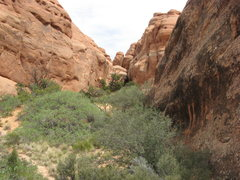 Rock Climbing Photo: This is the first meadow.  The way to the crux is ...