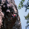 The classic JCCII (put up by Jeonju Climbing Center), one of many classics in the area. 5.11b.