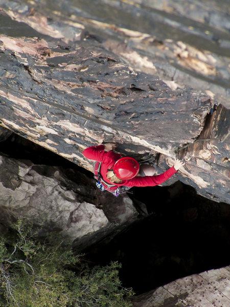 Rock Climbing Photo: Holly on P1 of Birdland