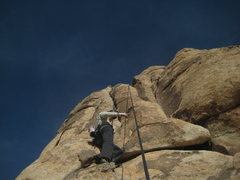 Rock Climbing Photo: on one of many cracks that day
