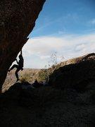 Rock Climbing Photo: Bouldering on the Tuolumne Boulder, Joshua Tree NP...