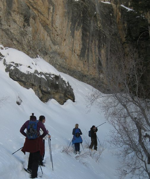 For forum post- Snow shoeing at Mt. Charleston, NV. with my girly friends. Breaking trail in Fletcher Canyon. <br> Taken 2/15/10