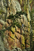 Rock Climbing Photo: Eldorado Canyon, Fox Trot 11d Climber unknown