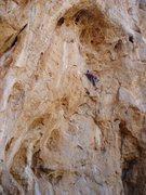 Rock Climbing Photo: Got Pump?