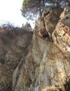 Rock Climbing Photo: Charlie working up the layback