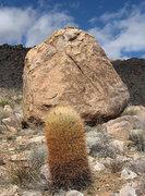 Rock Climbing Photo: Yellow Barrel. Photo by Blitzo.