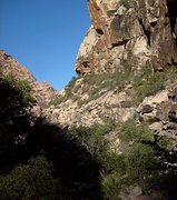 Rock Climbing Photo: From the condo area in the south fork of Oak Creek...