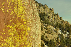 Rock Climbing Photo: The green Lichen of Eldo
