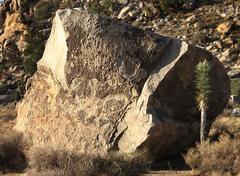 Rock Climbing Photo: The Yabo Boulder. Photo by Blitzo.