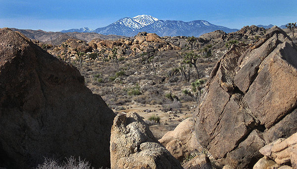San Gorgonio from Queen Valley.<br> Photo by Blitzo.