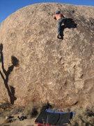 Rock Climbing Photo: Ted sends LHMFP at Josh.