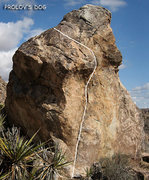 "Rock Climbing Photo: ""Prolov's Dog"". Photo by Blitzo."