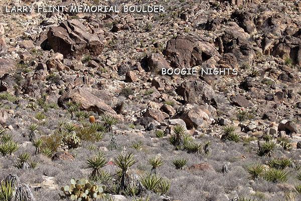 Rock Climbing Photo: Larry Flynt Memorial Boulder. Photo by Blitzo.