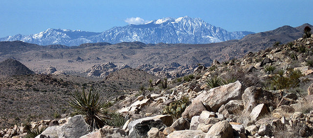 Rock Climbing Photo: San Jacinto as seen from Queen Valley. Photo by Bl...