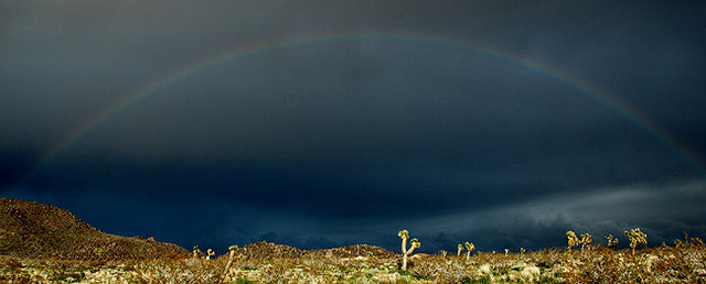 High Desert Rainbow.<br> Photo by Blitzo.