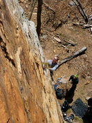 Rock Climbing Photo: Mike checking out the moves on Changnurdle, T-Wall...