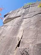 Rock Climbing Photo: Nutcracker