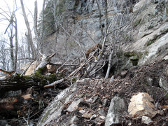 Rock Climbing Photo: main cliff trail destroyed this is what you have t...