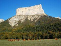 Rock Climbing Photo: Mont Aiguille