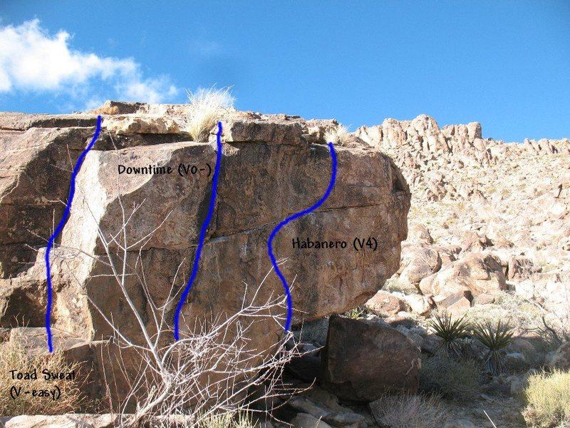 Photo/topo for The Habanero (S. Face), Joshua Tree NP