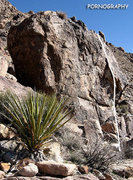 Rock Climbing Photo: Pornography. Photo by Blitzo.