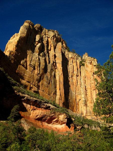 Rock Climbing Photo: The Golden Spike