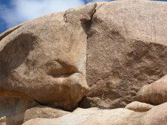 Rock Climbing Photo: the crack!