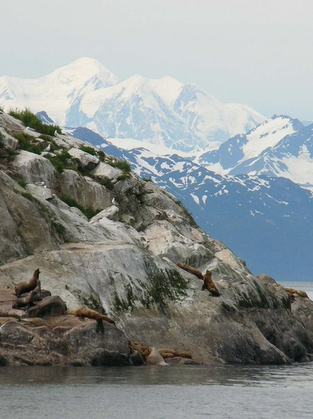 Mt Fairweather from Glacier Bay, Alaska.<br> <br> Loran Smith photo.
