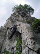 Rock Climbing Photo: Sharks Fin - More info here: rockclimbingincambodi...